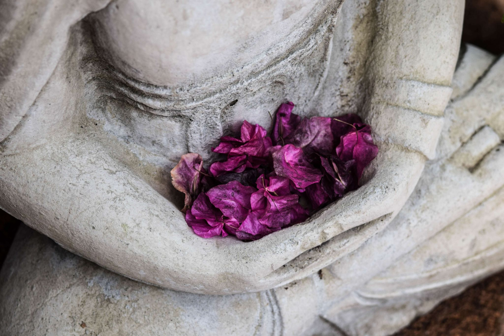 Buddhism has much to teach us about the art of happiness