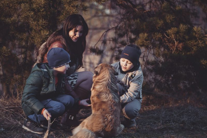 Mum and sons playing with dog