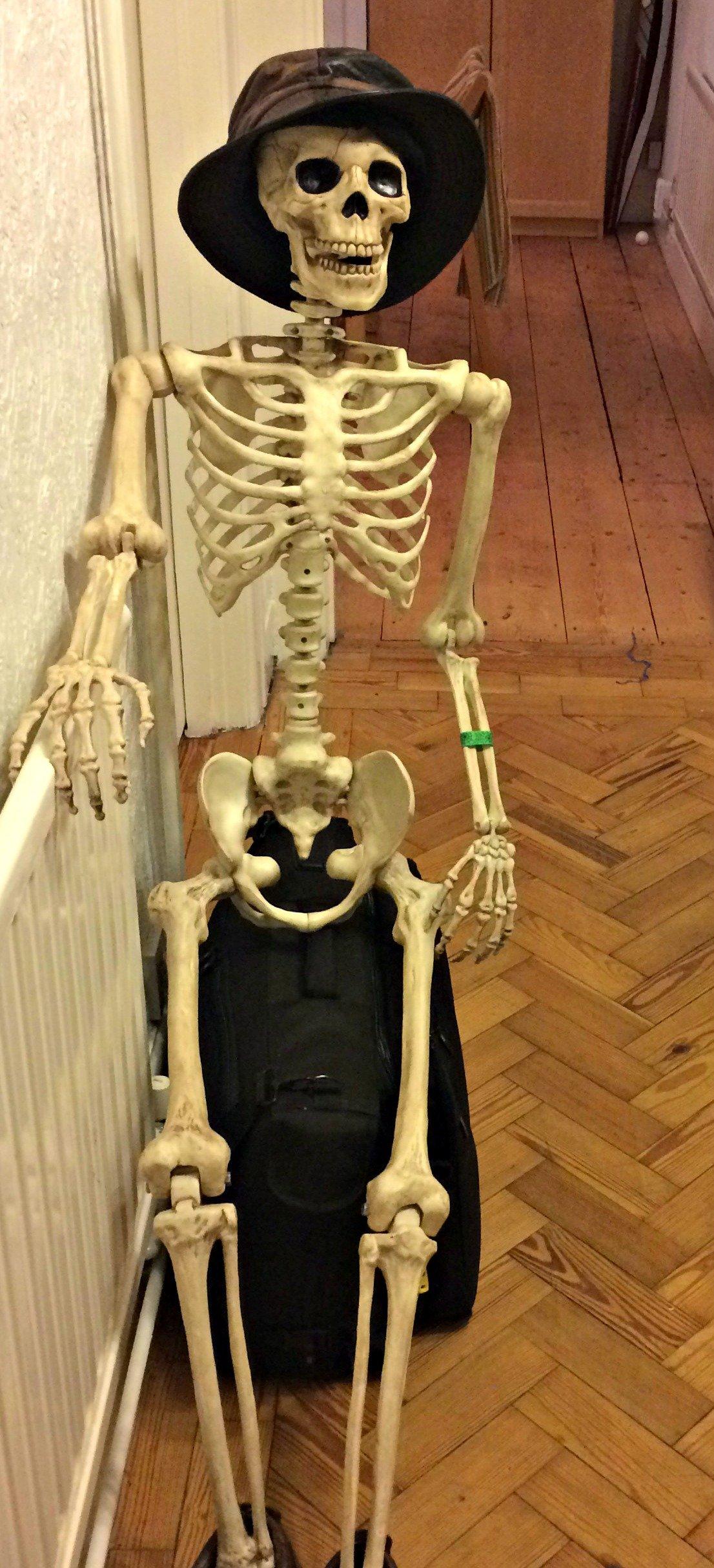 Dummy skeleton