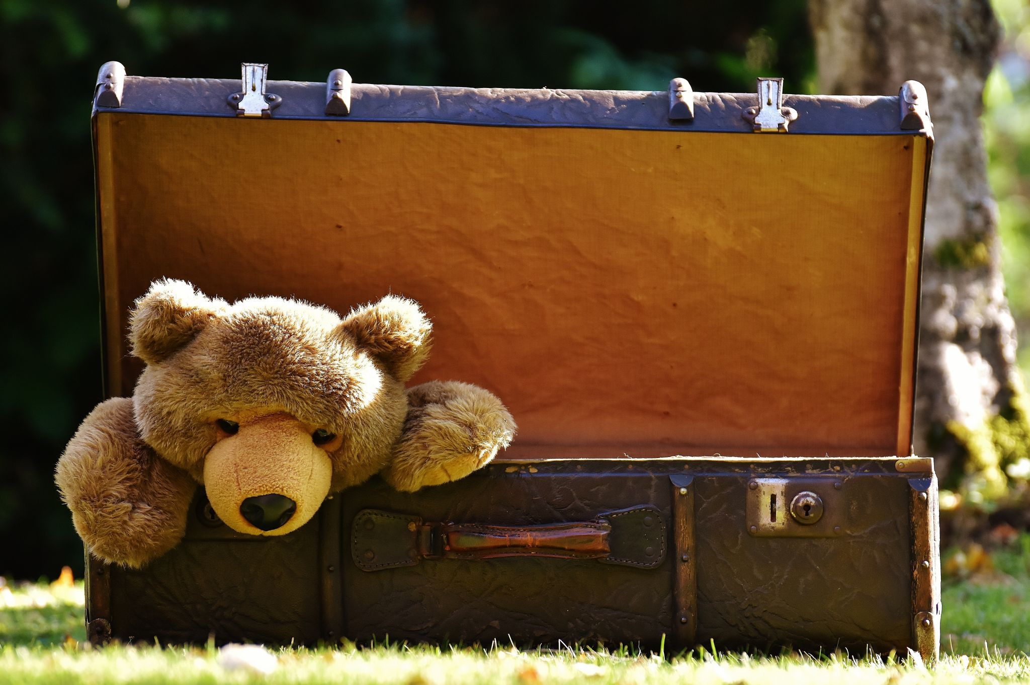 winter family travel health tips - teddy bear in a suitcase