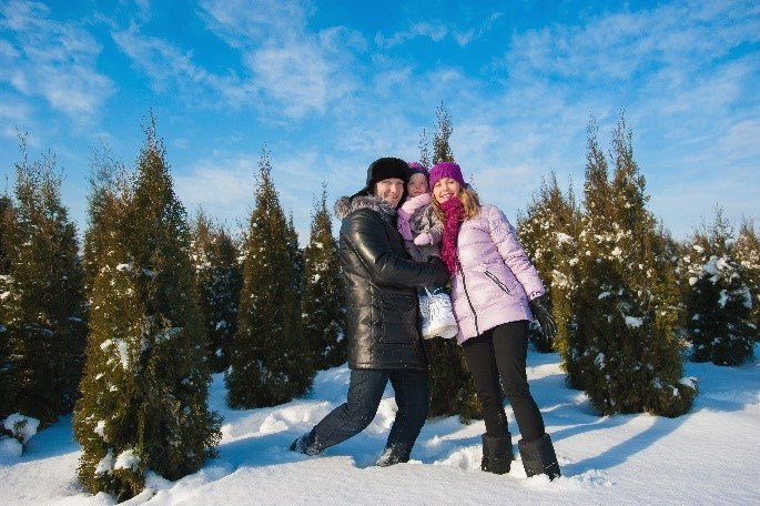 Mummy, daddy and baby posing for a photograph surrounded by Christmas trees and snow