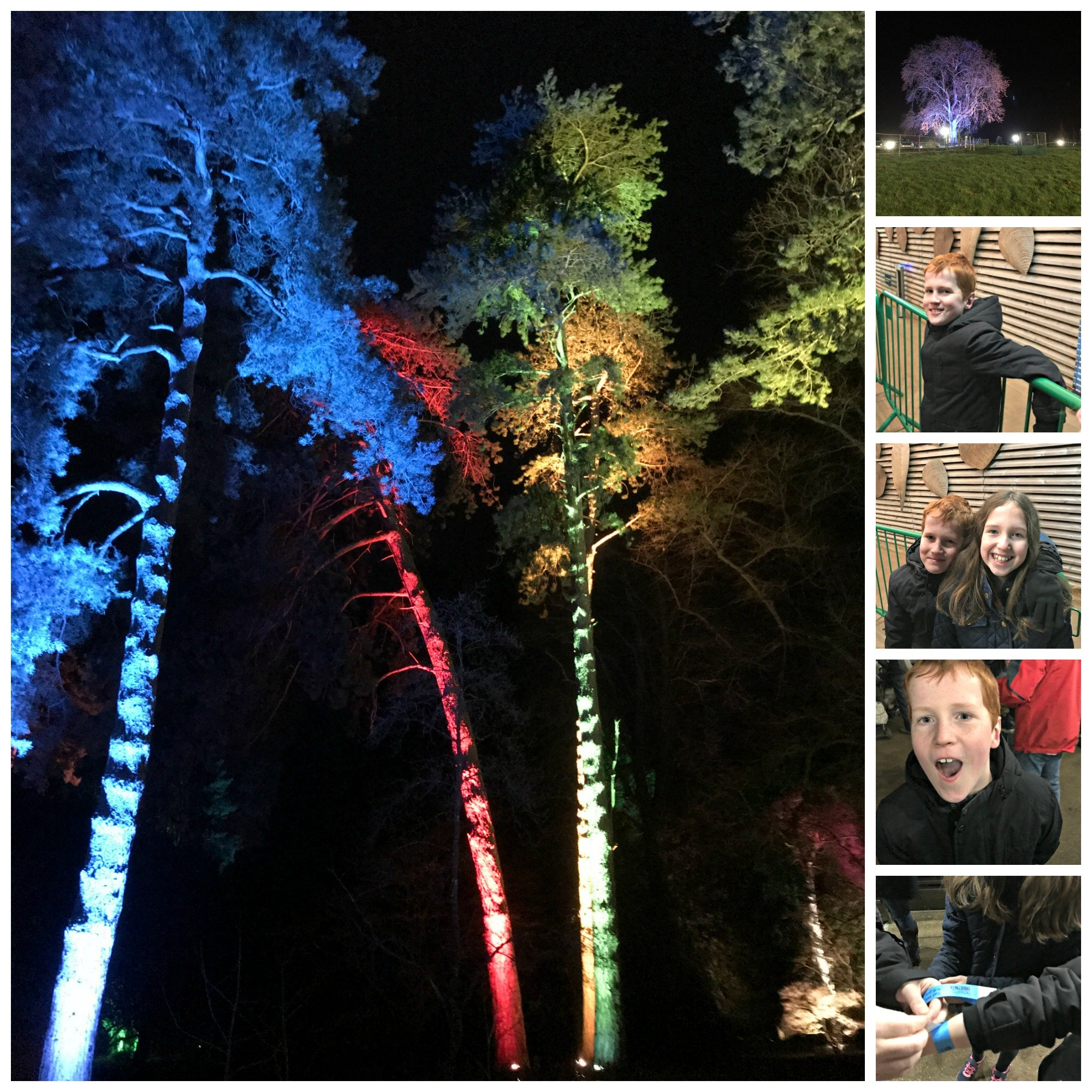 Collage of Caitlin and Ieuan at Westonbirt Arboretum Enchanted Christmas Trail 2017