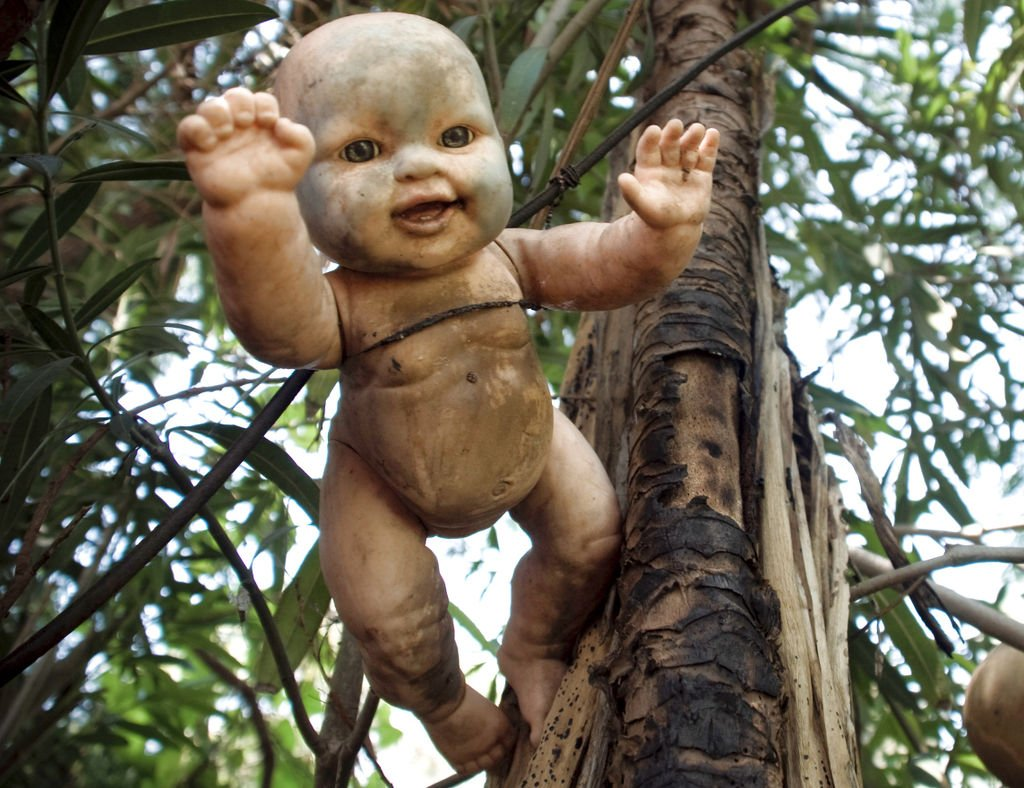 Creepy doll hanging from tree in Island of the Dolls, Mexico