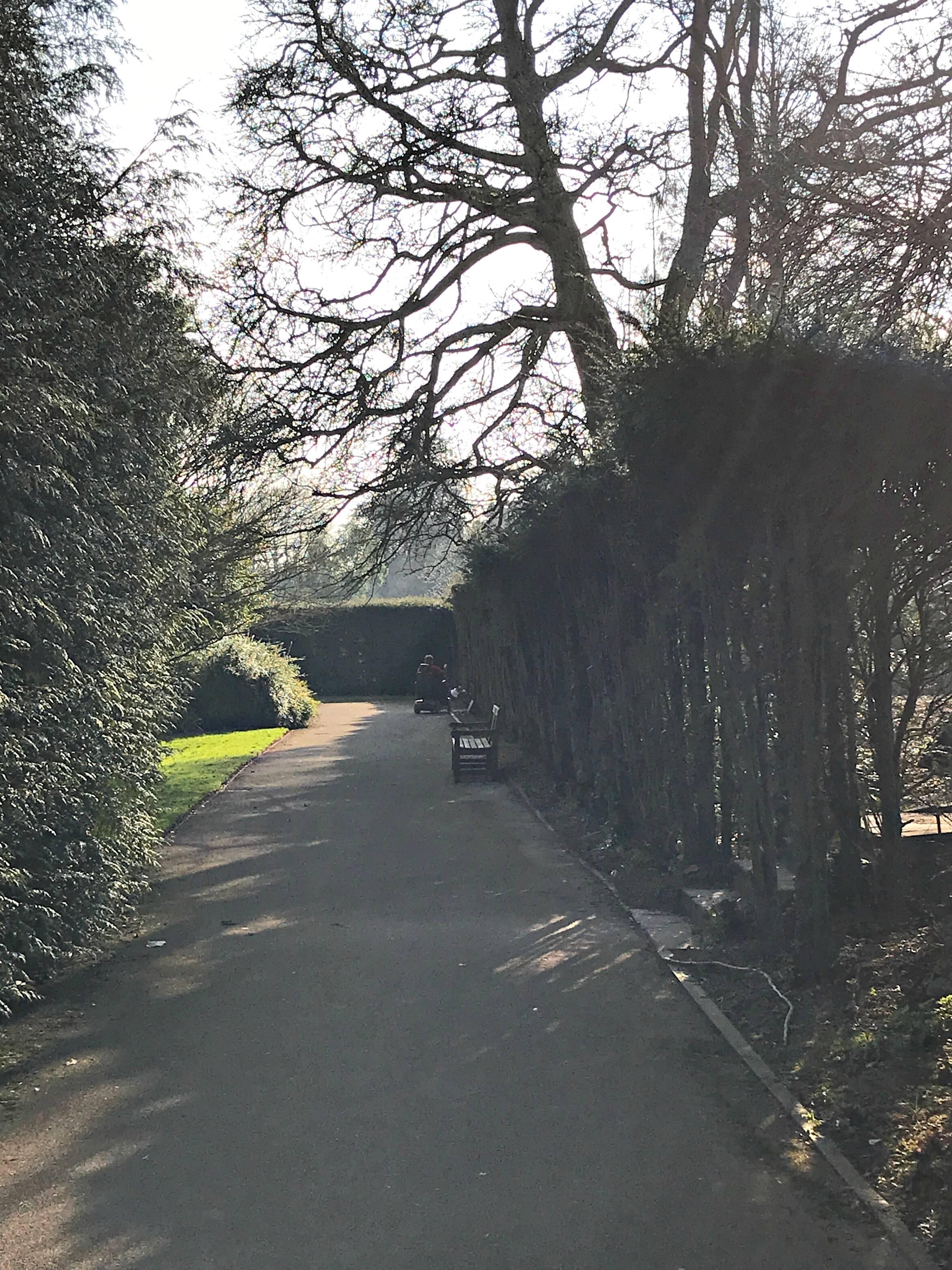 Pathway at Dyffryn Gardens