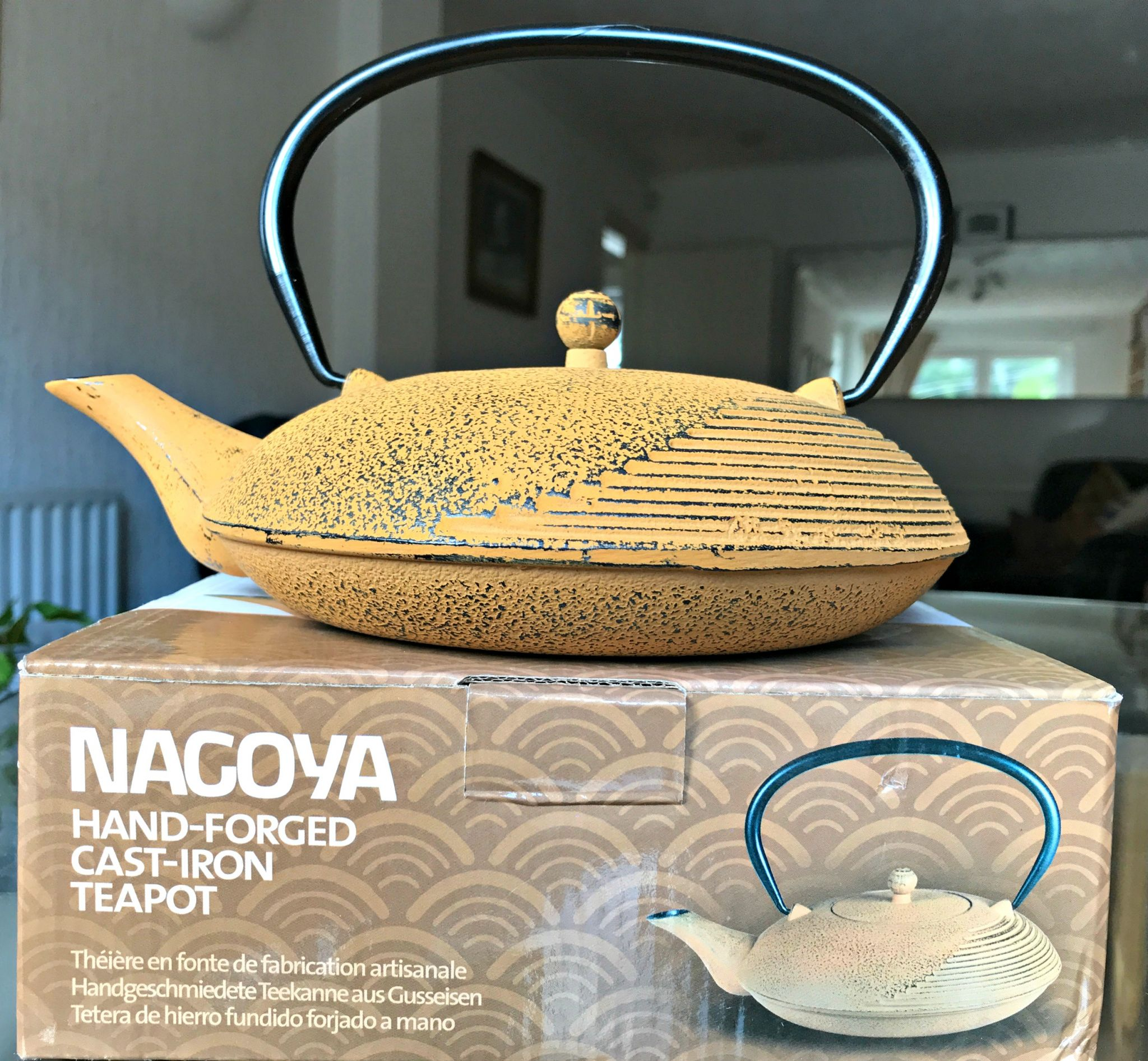 Adagio gourmet tea: Nagoya Hand Forged Cast Iron Teapot
