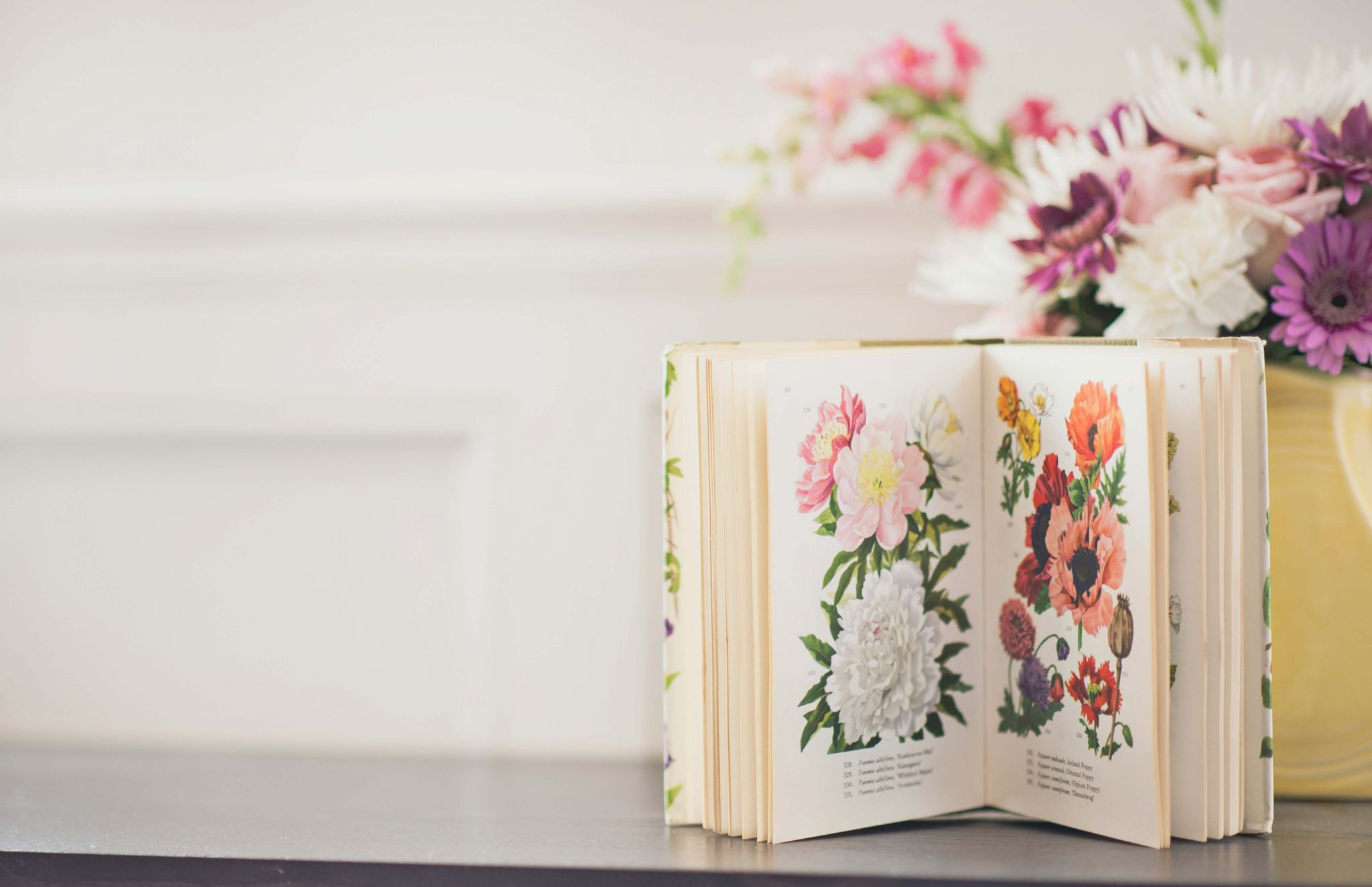 free and bargain books linky - pretty illustrated floral book
