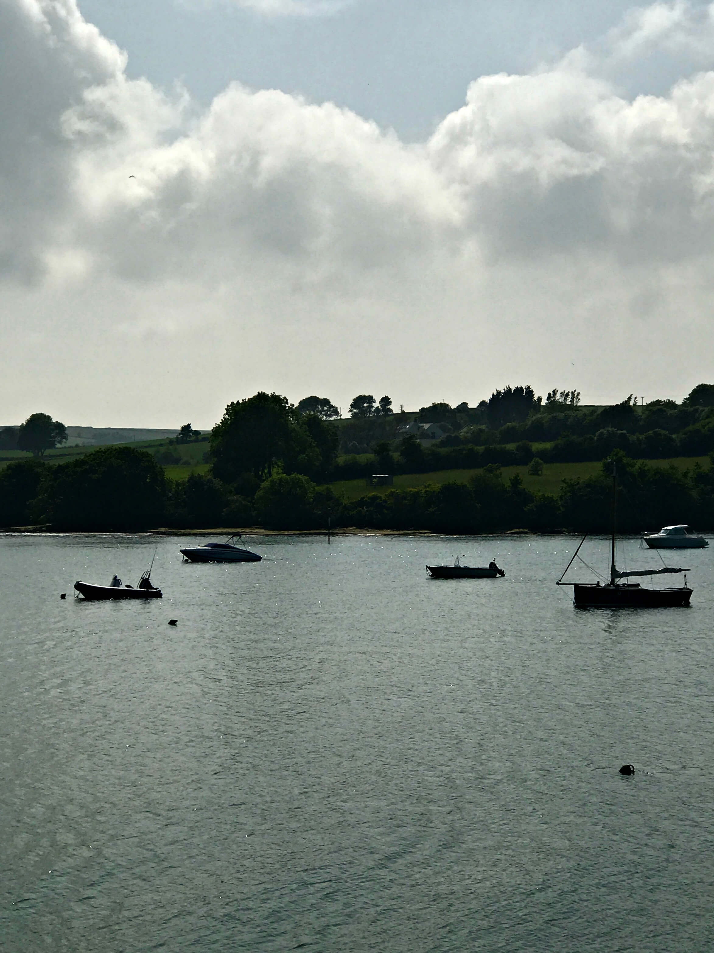 My Sunday Photo - view from Westcliffe boathouse balcony