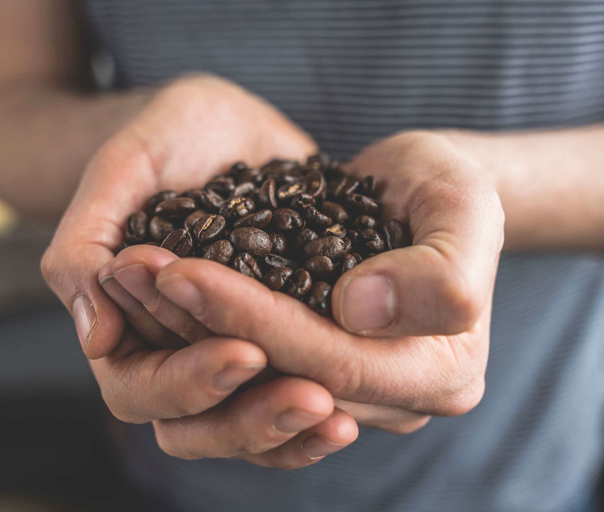 speciality coffees - hands holding coffee beans