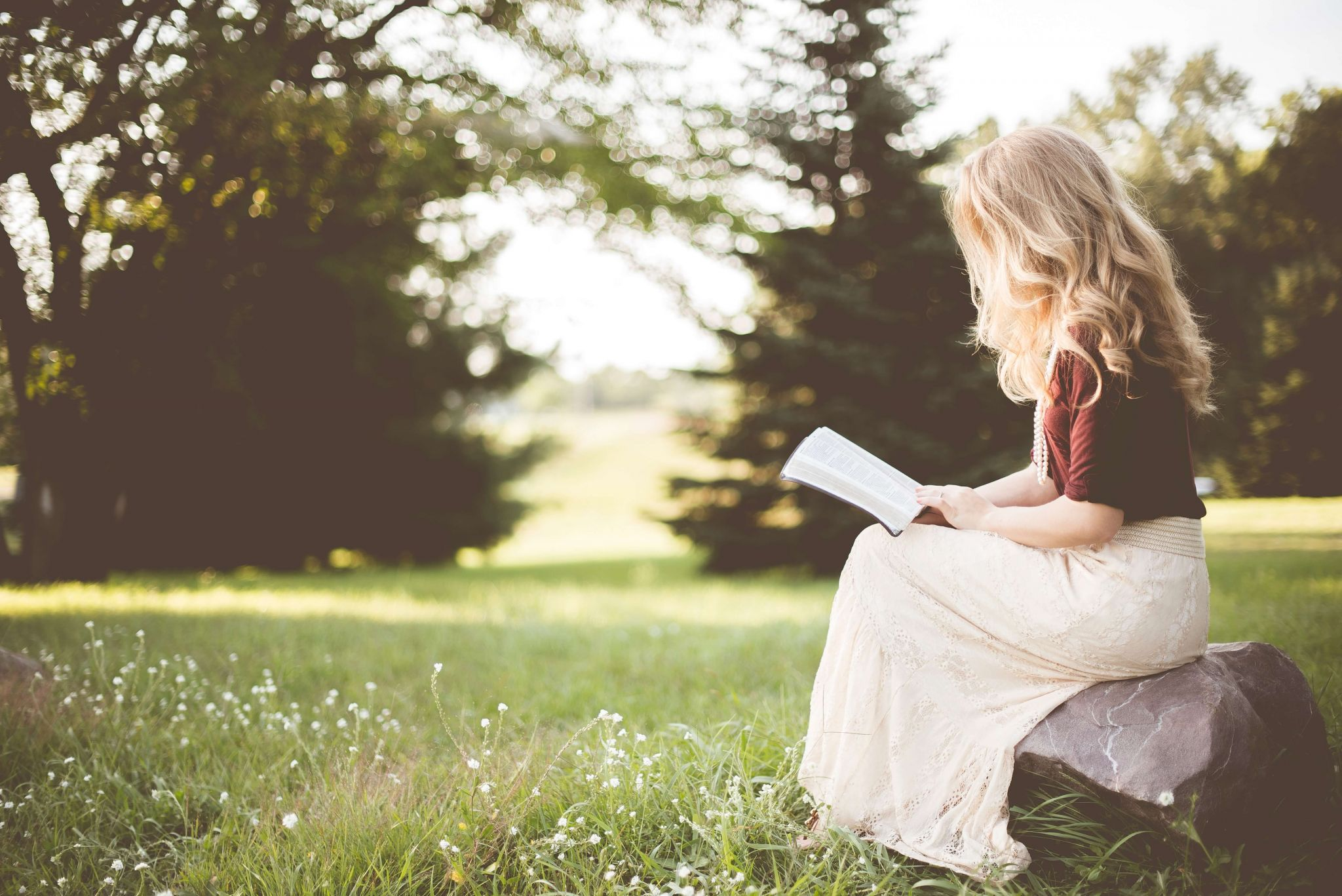 free and bargain books - woman sitting on a rock in a meadow reading a book