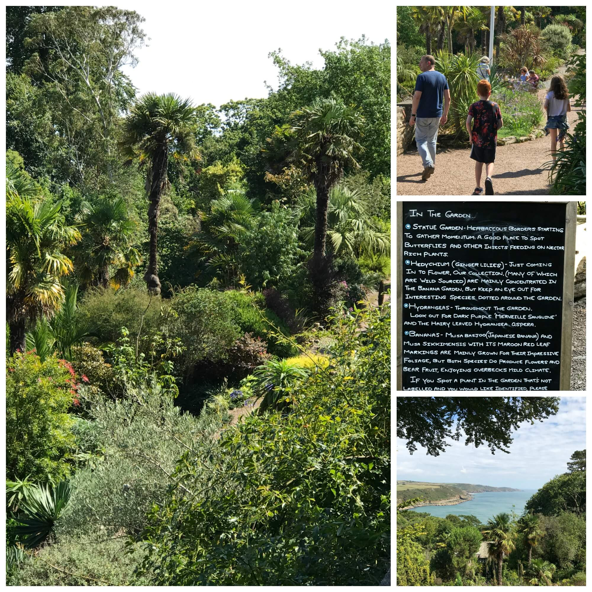 Overbeck's garden - collage of pictures