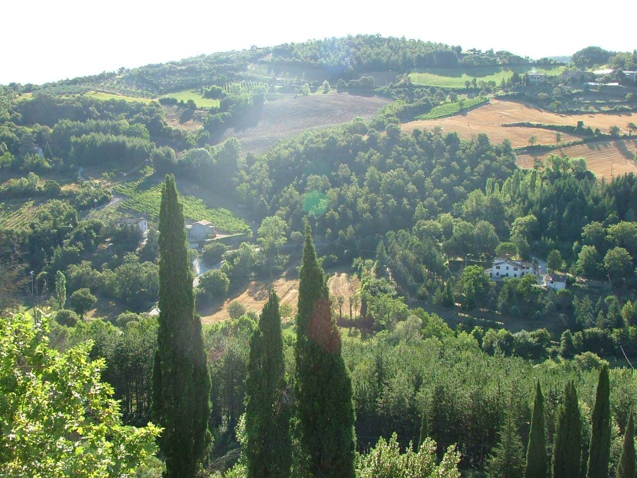 Villa Pia in Lippiano - picturesque Italian countryside